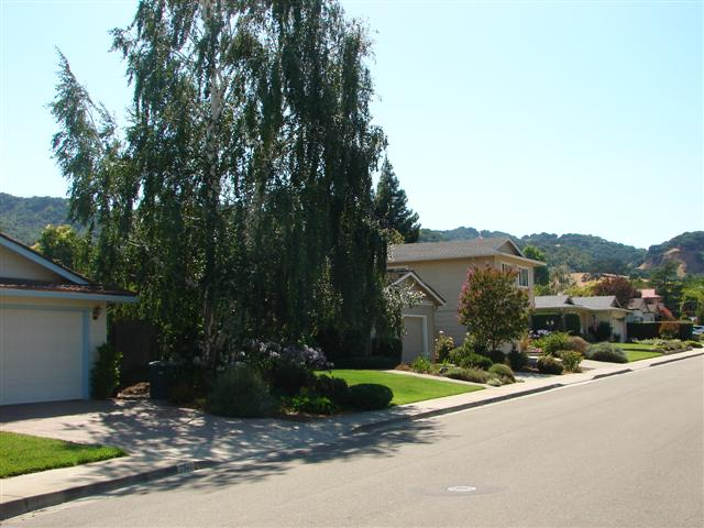 Highland Oaks pleasanton homes for sale 1 (Small)