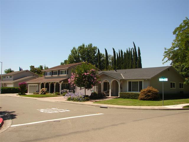 Pleasanton Valley Birdland pleasanton homes for sale 3 (Small)